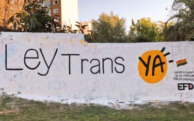¡Ley trans ya!